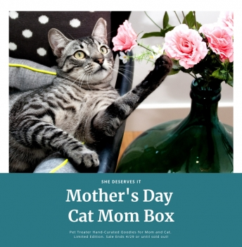 Mothers Day Cat Mom Box