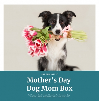 Mothers Day Dog Mom Box